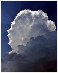 Zeus Acending by Felix Lanier